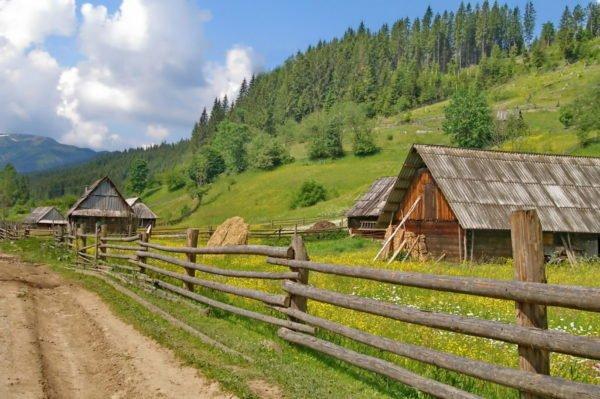 Как заработать в деревне и несколько простых идей