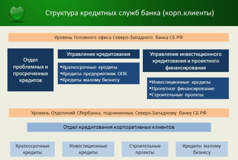 Структура кредитного отдела Сбербанка