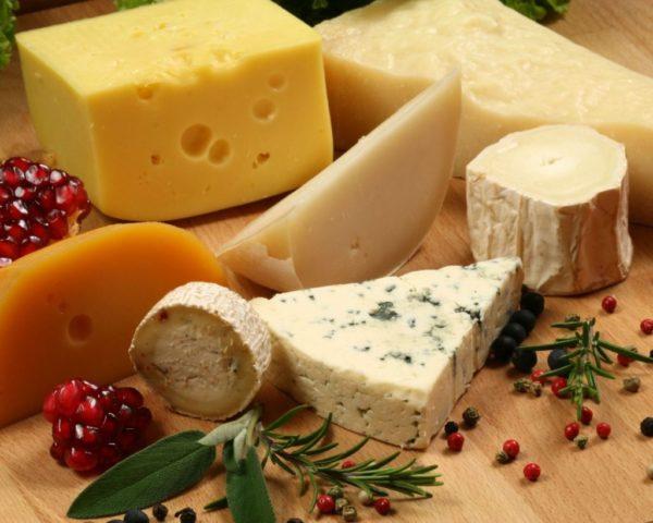Бизнес по производству сыра: как открыть мини-цех