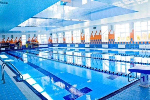 Бизнес-план по открытию бассейна
