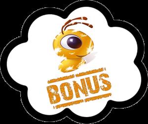 Что такое Вебмани бонусы?