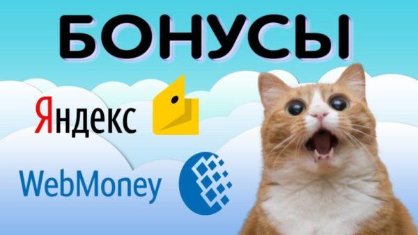 Что такое бонусы на Яндекс Деньги?