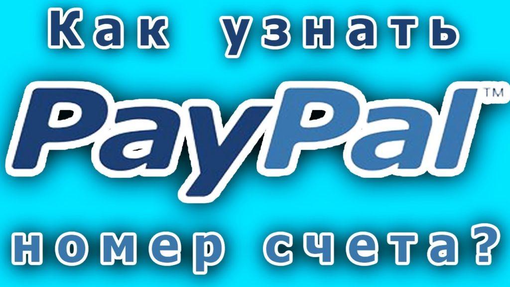 Все о том, как узнать свой счет Paypal
